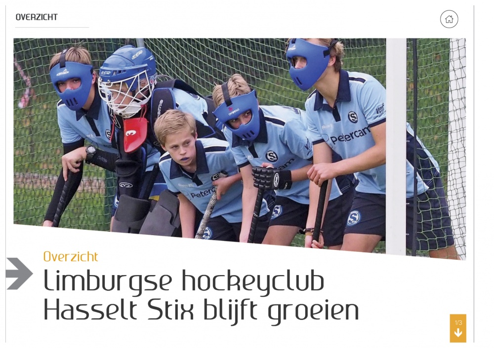 Artikel hockey player